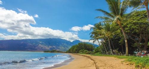 Hawaiian beach scene