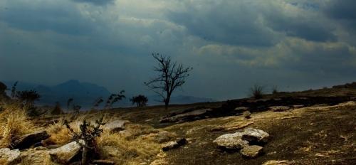 storm in desert