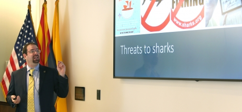 shark conservation discussion