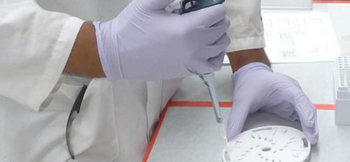 person's hands holding a dropper in a lab