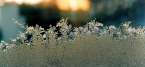 Frost rises up a window.