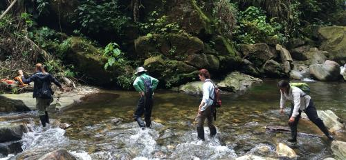 photo of team hiking across jungle river