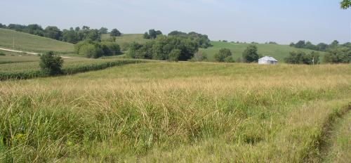 A farm in Jackson County, Iowa
