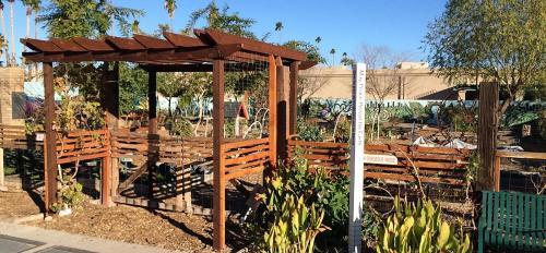 Mesa Urban Garden