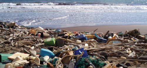 Debris piled up on a beach