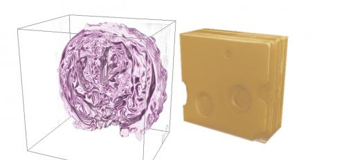 3D reconstruction renderings of red cabbage and Swiss cheese