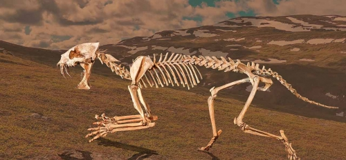 saber tooth cat fossil against mountain backdrop
