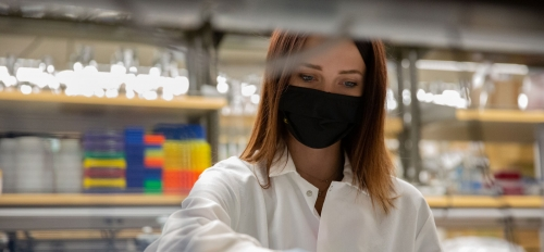 Biomedical engineering major Kristin Huber conducts research as part of the Fulton Undergraduate Research Initiative program, known as FURI.