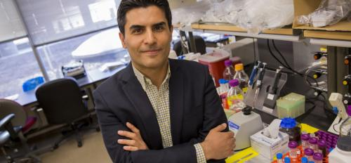 """Portrait of Mehdi Nikkhah in his lab with a caption of """"Assistant Professor Mehdi Nikkhah's vision of a microengineered chip to better understand hear attacks is being rewarded bt the National Science Foundation with a CAREER Award totaling $500,000 over"""
