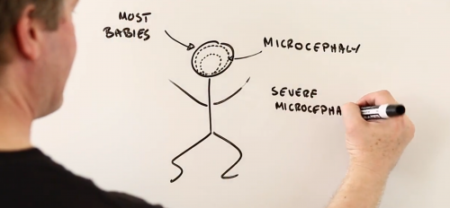A screenshot of a whiteboard in a video on the Zika virus.