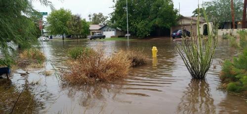 Flooded Tempe neighborhood
