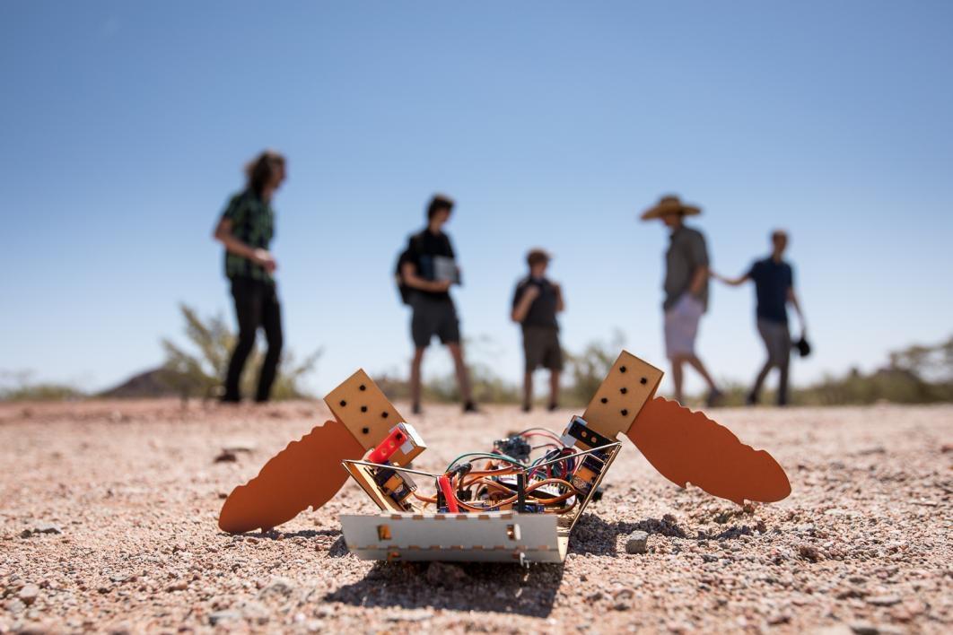 All-terrain robots