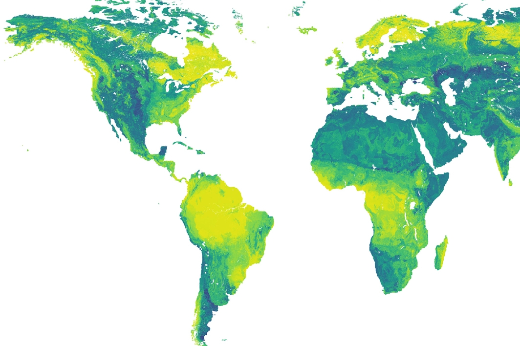 World map of local bicarbonate concentrations in aquatic environments