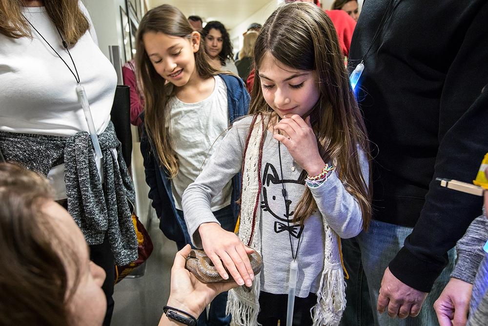 Touching a snake