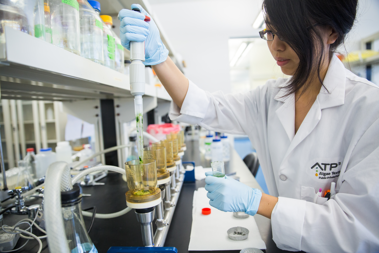 A researcher works in an algae lab.