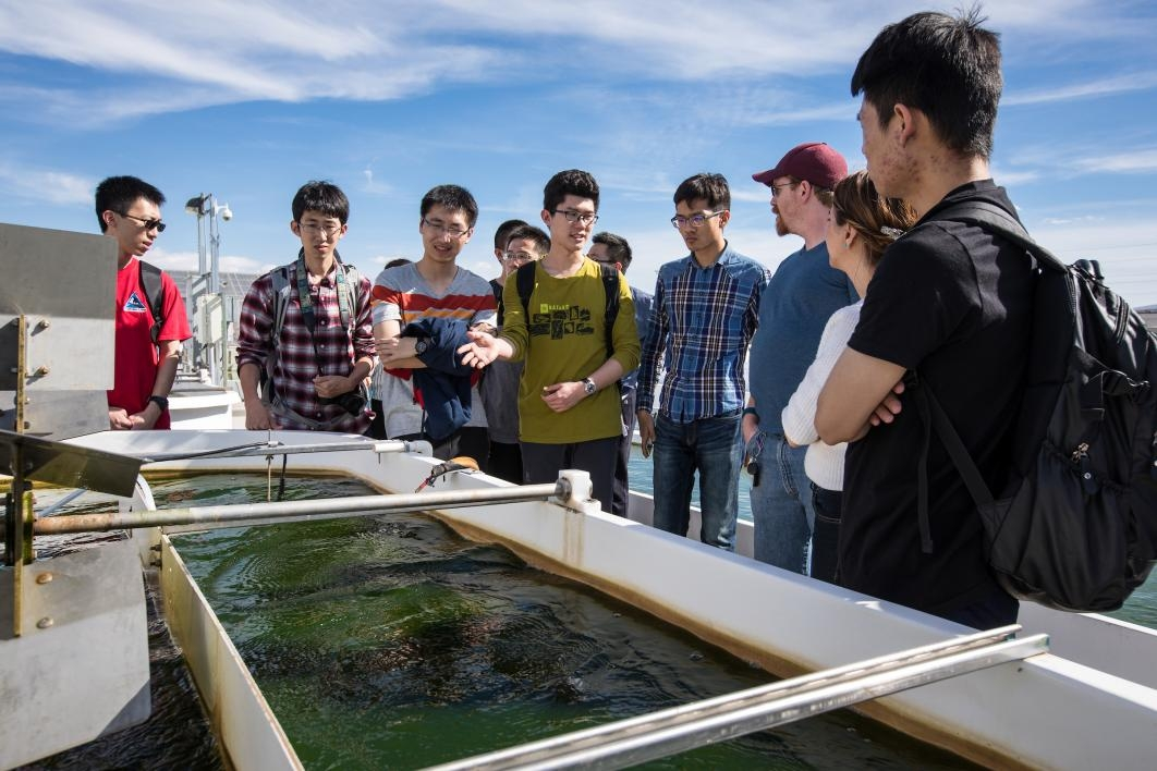 Beihang University students learn about an algae research facility