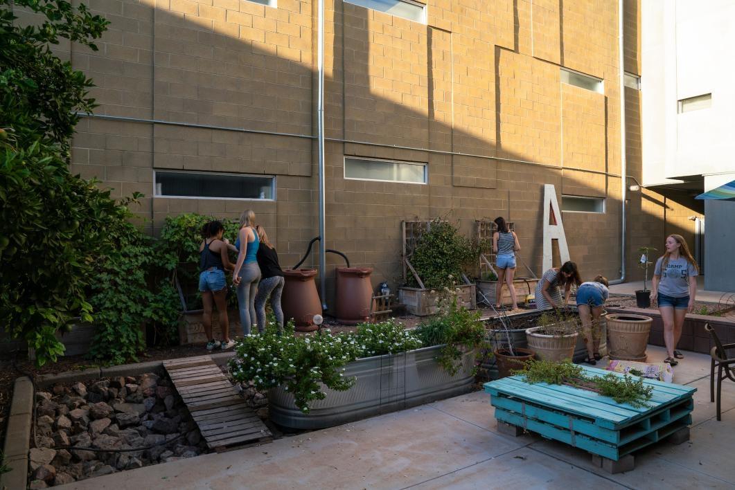 Seven women planting vegetables in a raised garden