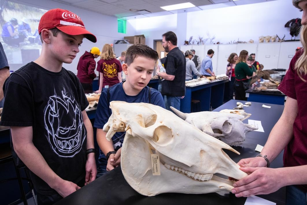 two boys look at a replica horse skull at open door