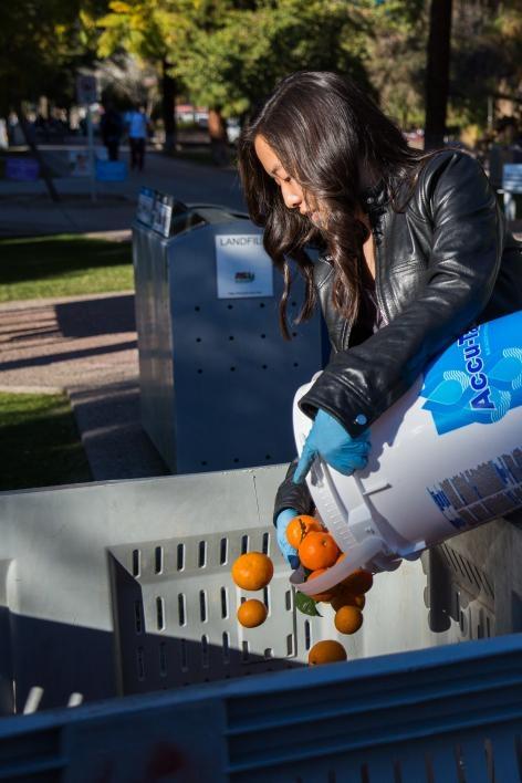 asu campus harvest orange harvest