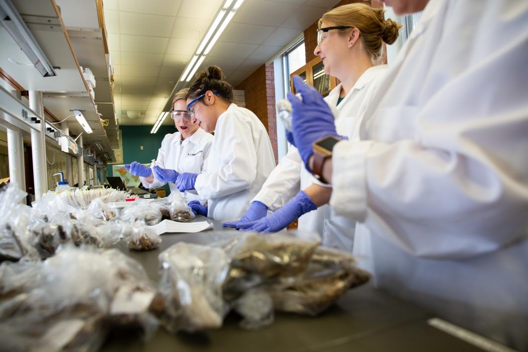 photo of Knudson and researchers looking through samples