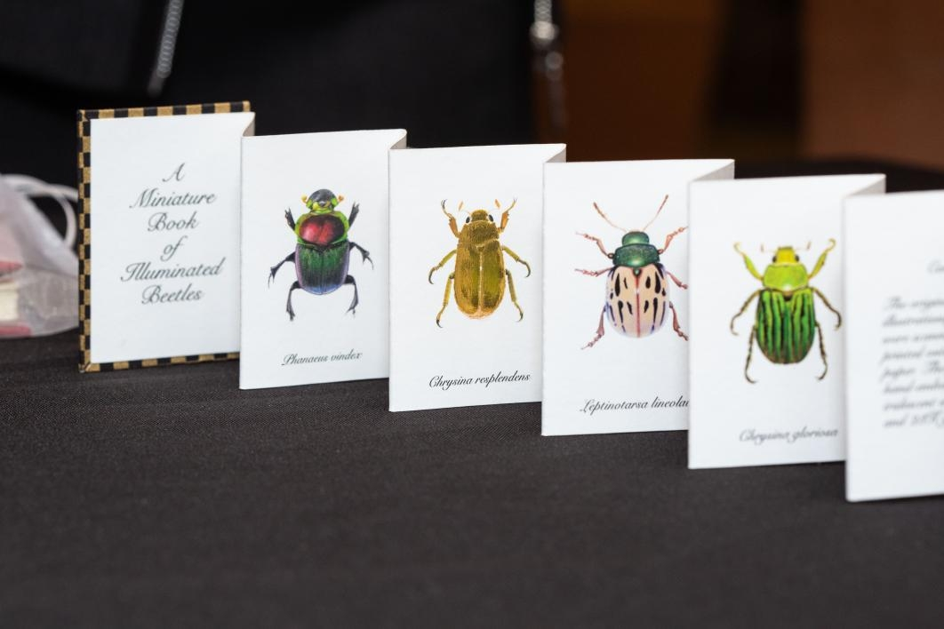 """A Miniature Book of Illuminated Beetles,"" Second Printing 2012 by Kelly Houle / Photo by Deanna Dent/ASU Now"
