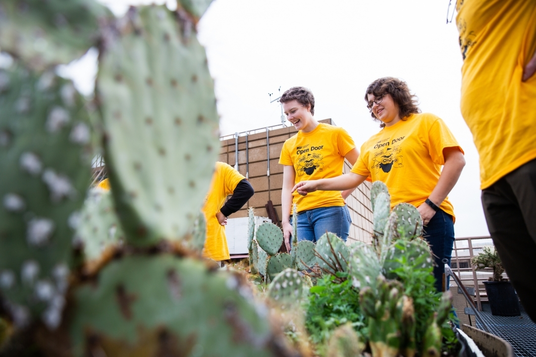 two women looking at cacti in garden