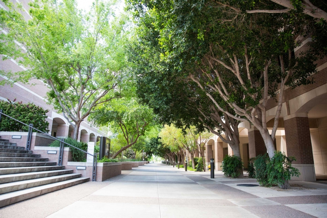 A courtyard on the ASU West campus full of trees