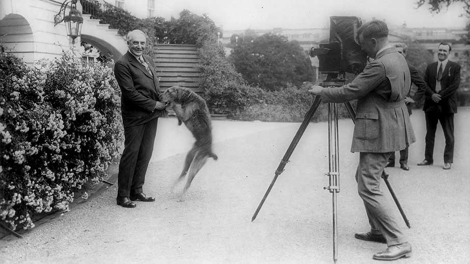 Black and white photo of President Warren Harding and his Airedale terrier Laddie Boy