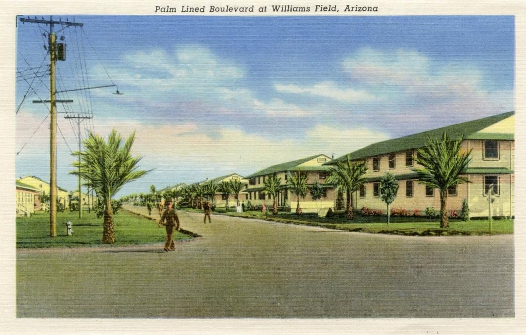 promotional picture of residential housing at Williams