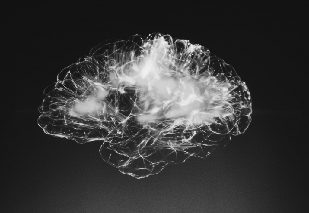 Black and white image of the brain