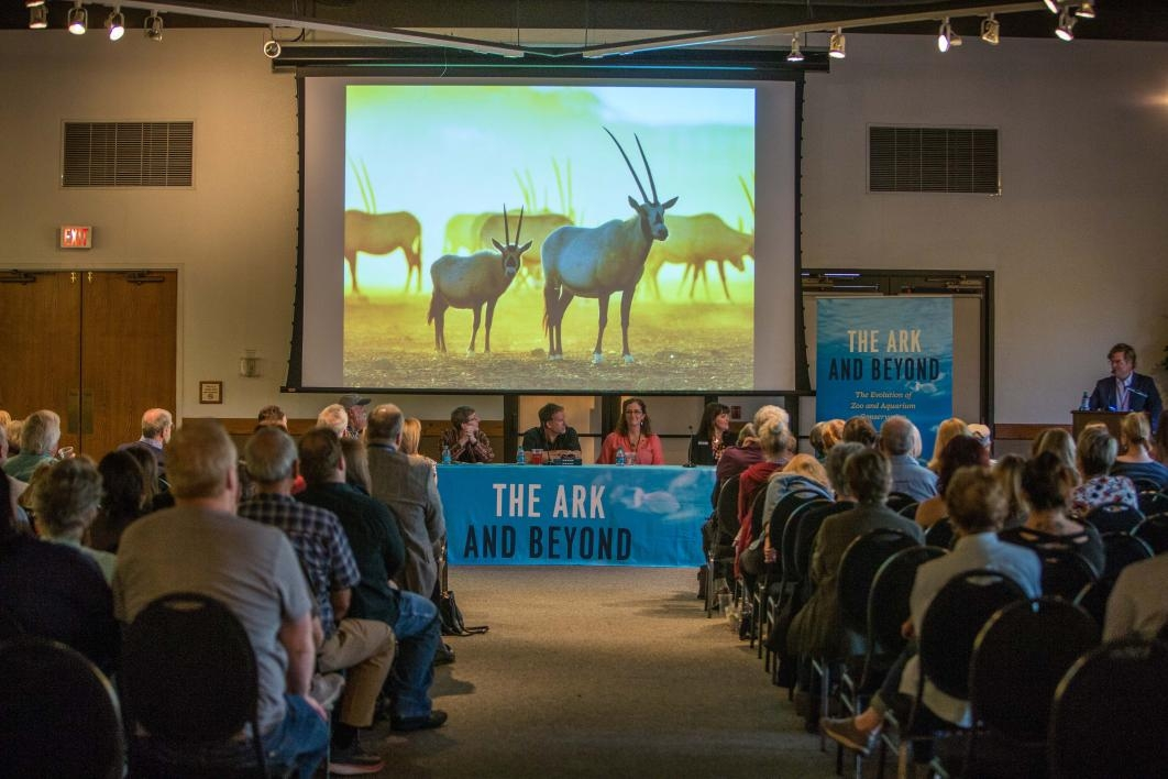 Ark and Beyond book event