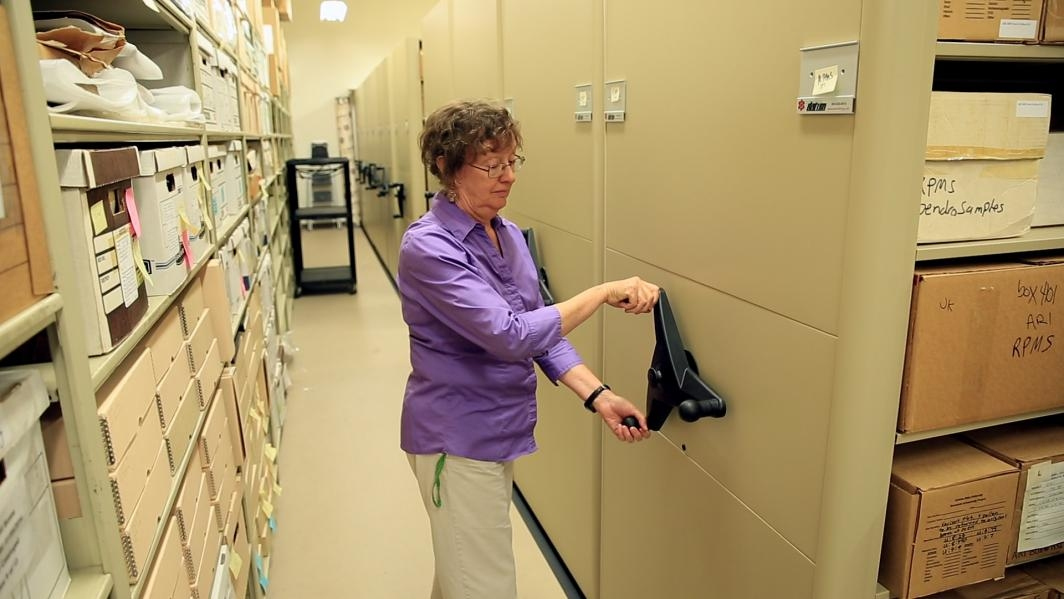 Arleyn Simon in the archaeology collection's storage area.