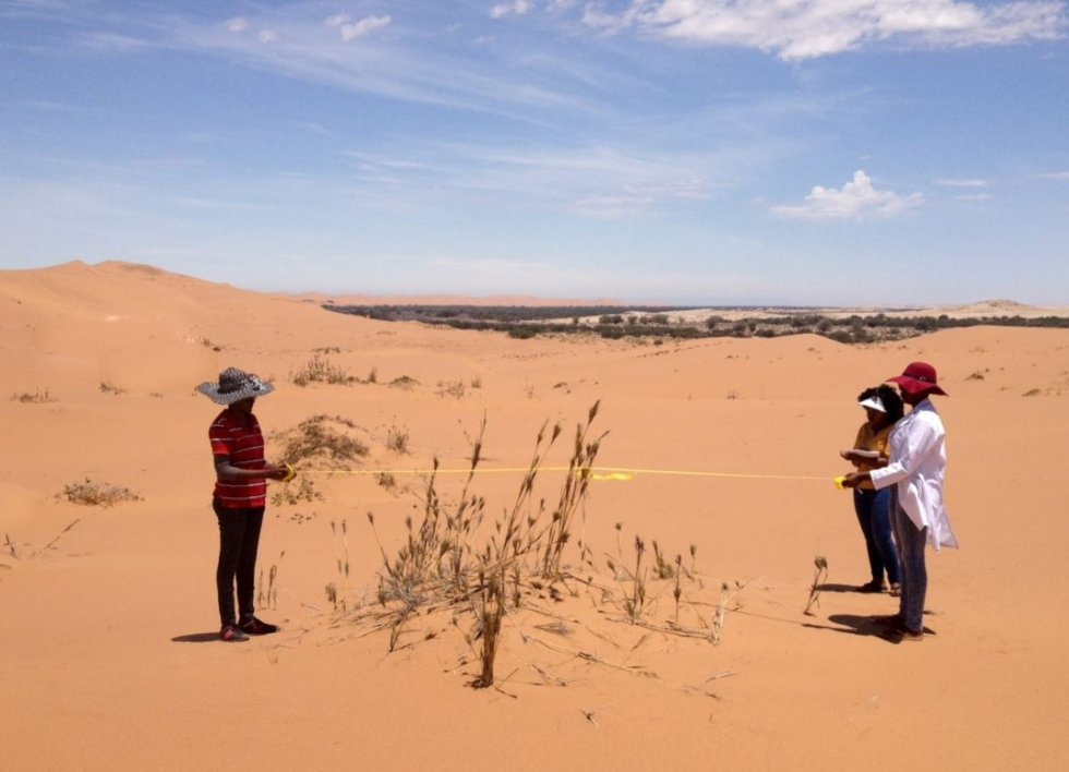 researchers measuring carbon dioxide release from the soil in the Namib Desert in southern Africa