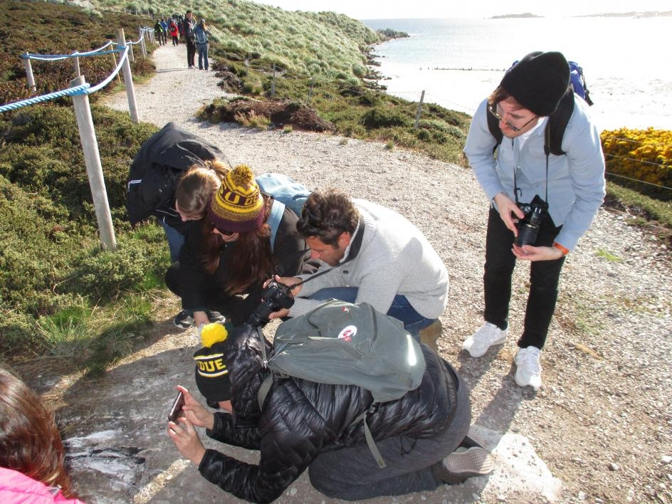 Group of ASU students observing penguins in the Falkland Islands