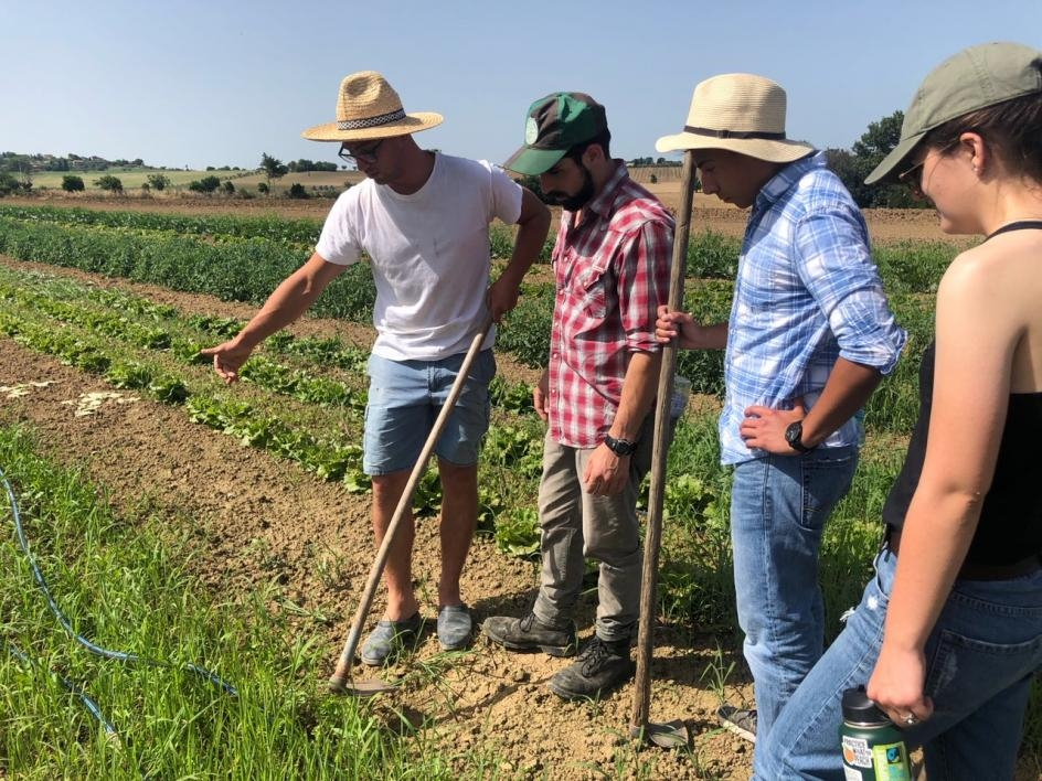 ASU students learning to hoe the soil for aeration