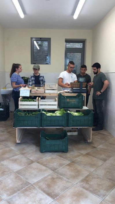 ASU students helping out with the market day near San Severino, Italy