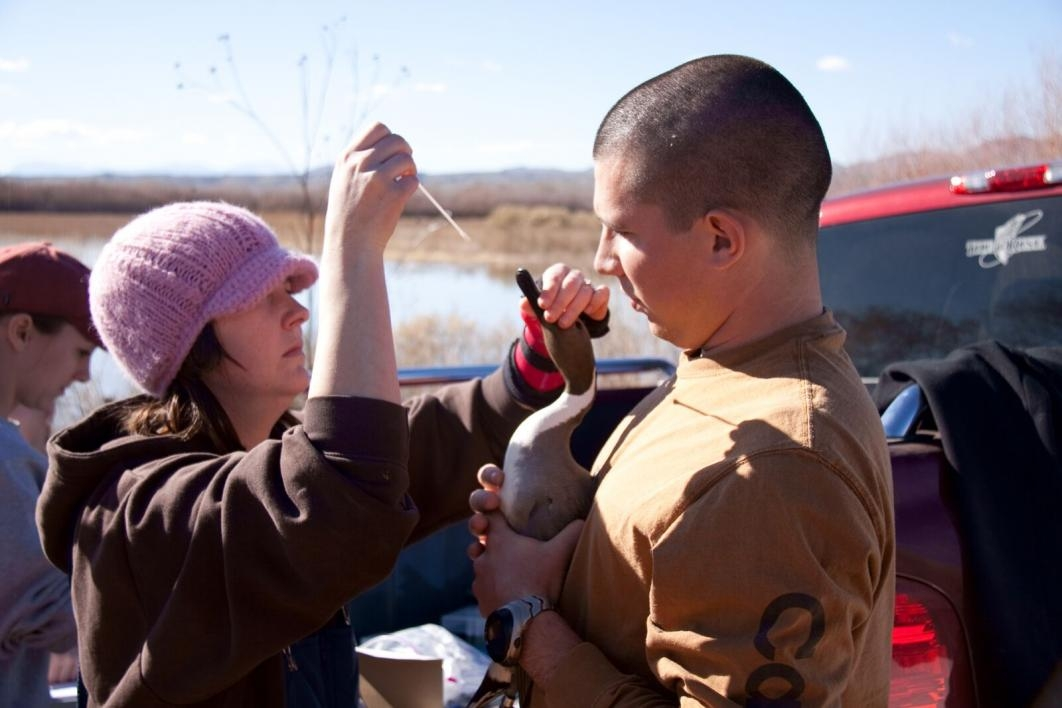 man and woman holding a duck, feeding it with dropper