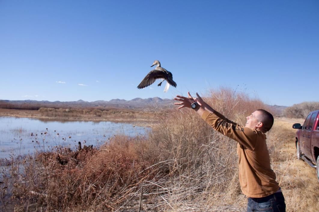 man releasing duck into the air