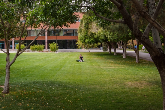 student sitting on lawn