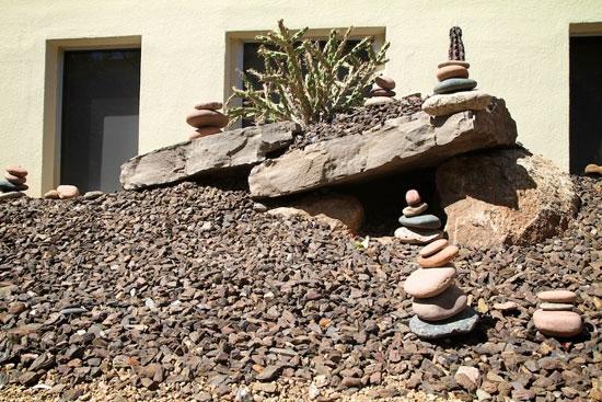 Sonoran Desert Garden