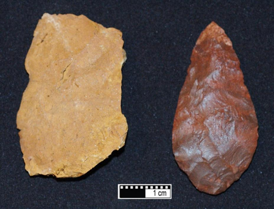 Research shows that early modern humans used fire to make tools.