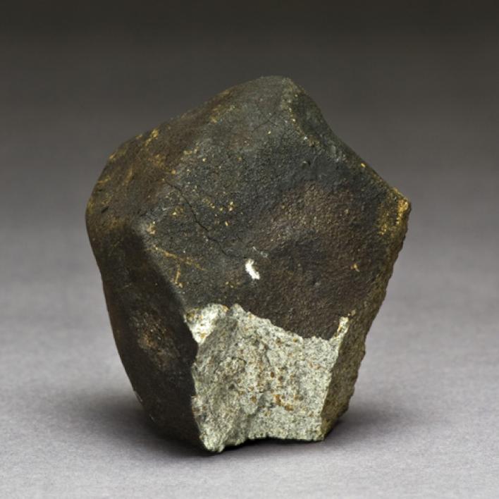NWA1152 meteorite