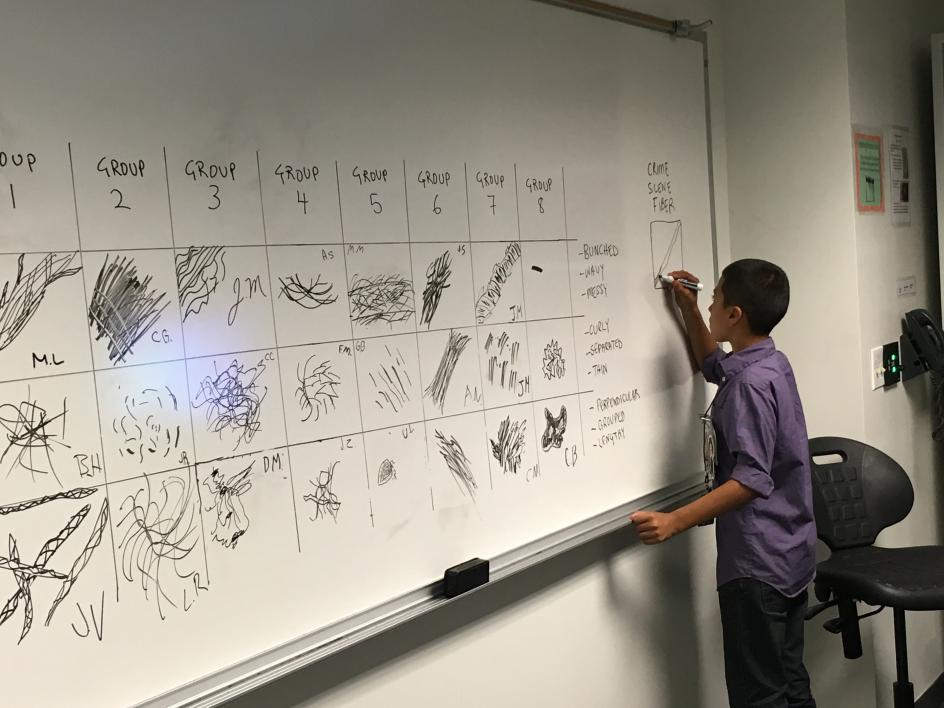 Science in the City at ASU - student draws fiber samples as seen with the microscope