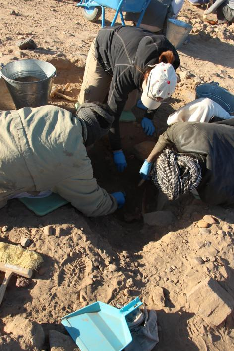 photo of Baker's team excavating a burial