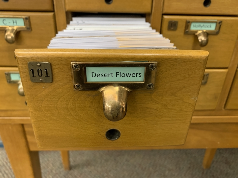 "a drawer for ""Desert Flowers"" in the seed library"