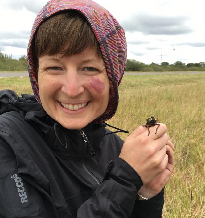 ASU scientist Arianne Cease holds a locust in Argentina