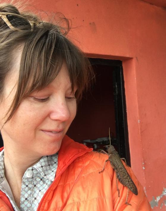 A large locust sits on a woman's shoulder