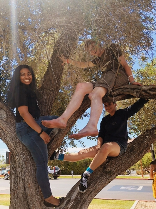 Janani Lakshmanan and friends relaxing in the trees