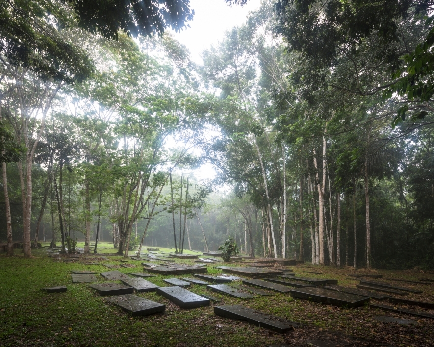 בית קברות יהודי בג'ונגל הקריבי