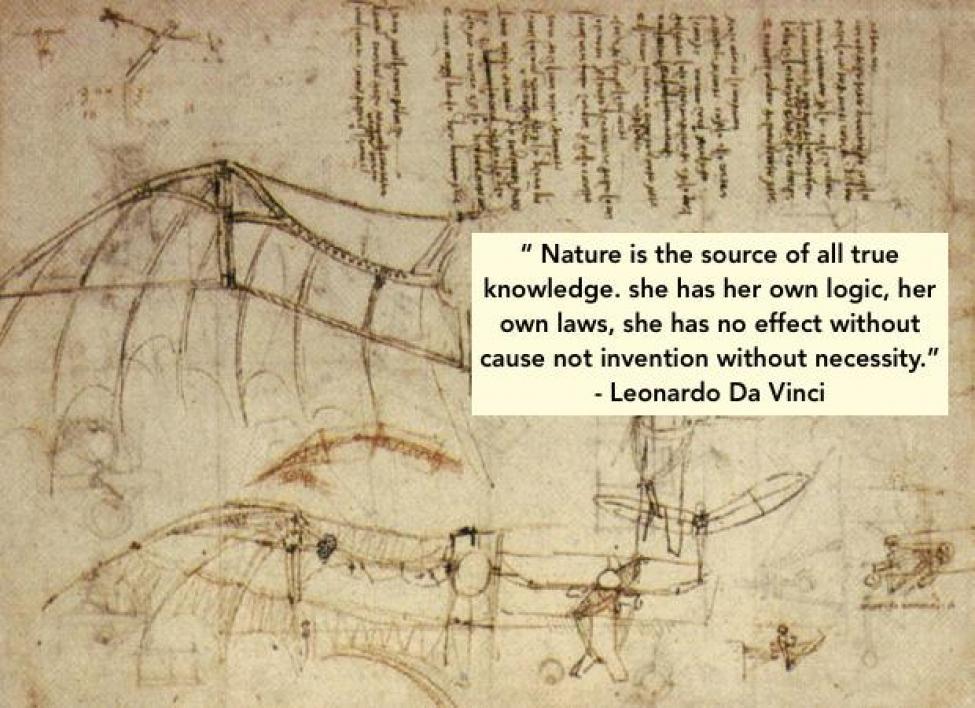 Leonardo quote on Saper vedere